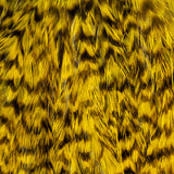 Whiting Streamer Pack - Grizzly Dyed Yellow