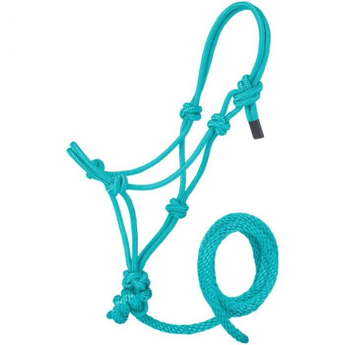 TK16-601-Small-Turq Halter Rope Miniature Poly w/Lead