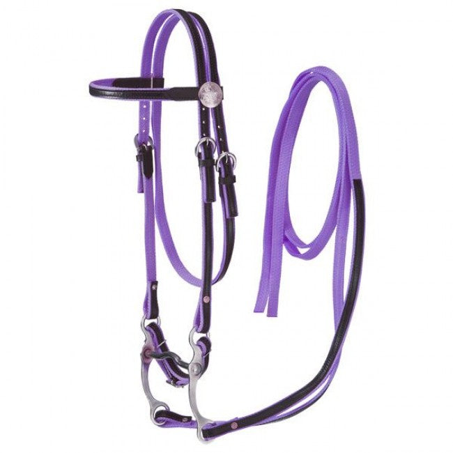 TK42-7499-7 Bridle Set Nylon w/Leather