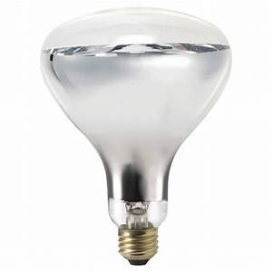 HG298 Heat Lamp Bulb-WHITE 250 watt - 2/pkg