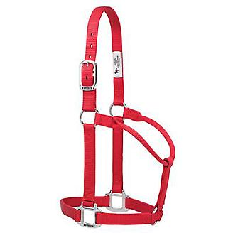 TK35-7386-Large-Red Halter, Non adjustable Large