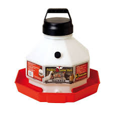 PE115-003 Waterer 3gal Plastic Little Giant