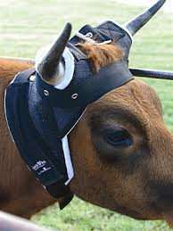 TK1588 Horn Wraps (Cattle) Cool Classic Equine
