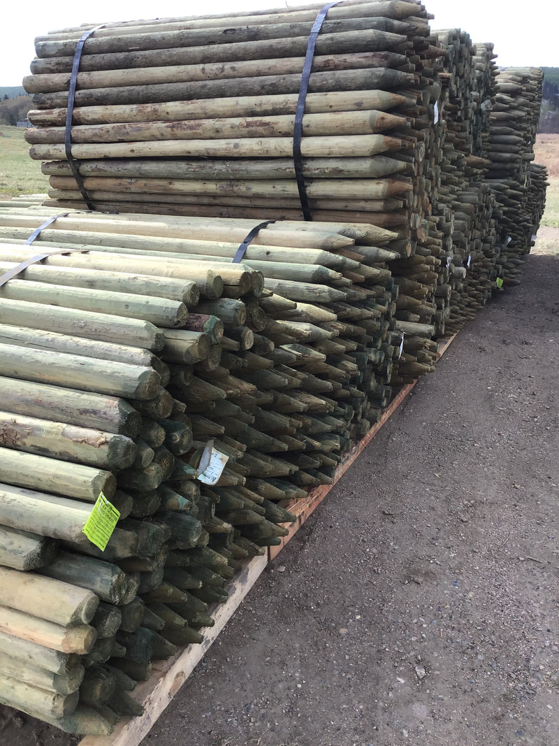 "FE236 Spray Lake Posts 2-3""x 6' Treated 180/bundle"
