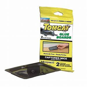 HG065-903 Mouse Trap Glue Board-Tomcat 4/pkg