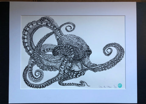 Octopus Limited Edition Prints