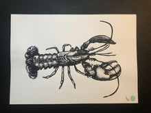 Lars the Lobster Print (unmounted)