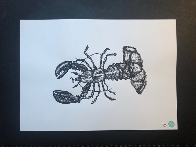Larissa the Lobster (unmounted)