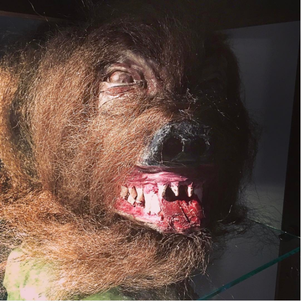 Werewolf Bust With Real Fur