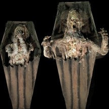 Mummified Coffin Corpse