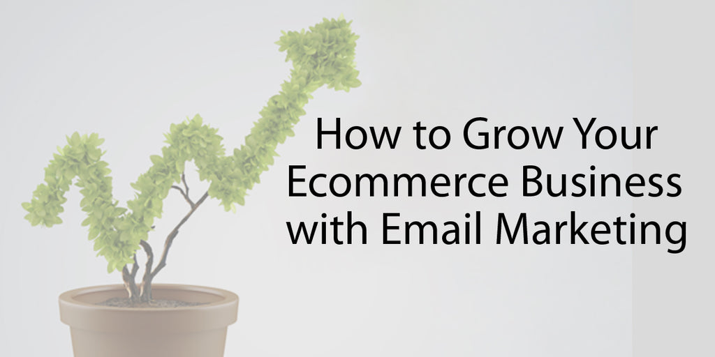 eCommerce Business with Email Marketing
