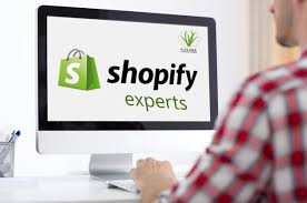 Shopify Maintainence