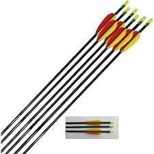 Petron Fibreglass Arrows 6 x 30 inch