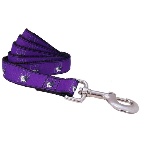 Northwestern Wildcats Premium Dog Leash