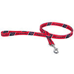 Houston Texans Dog Leash 2 (Discontinued)