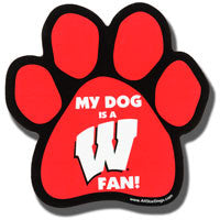 Wisconsin Badgers Car Magnet