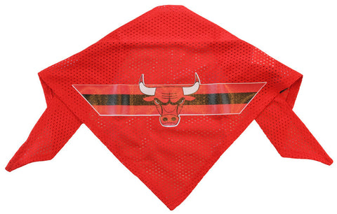 Chicago Bulls Dog Bandana (Discontinued)