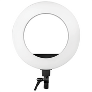 "LED 18"" Round Head Floor Lamp"