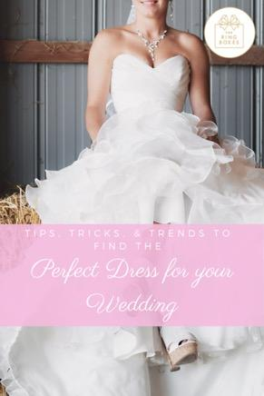 Tips, Tricks, & Trends to Find the Perfect Dress for your Wedding!
