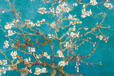 Almond Blossom San Remy 1890 Vincent van Gogh Large Wall Poster