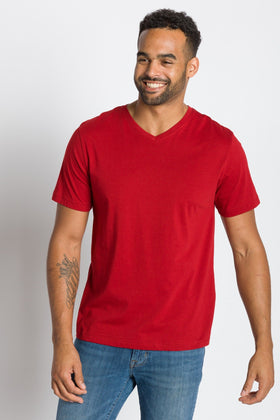 Jamison | Men's V-neck Tee