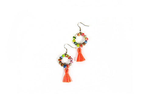 Multicolor Tasseled Earrings