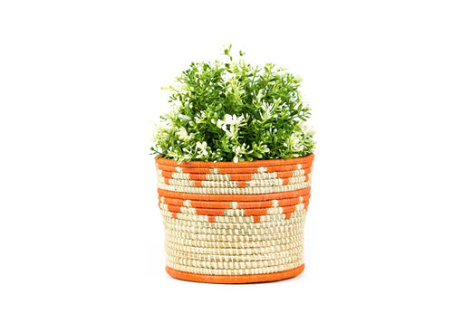 Papaya Raffia Planter