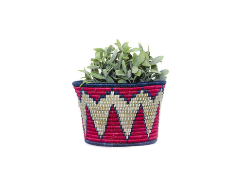 Red Sisal Planter