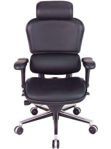 OfficeChairCity.com - Raynor Ergohuman High Back Leather Chair, Lifetime Warranty