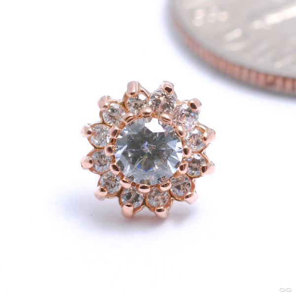13 Stone Flower Press-fit End in Gold from Leroi with Clear CZ