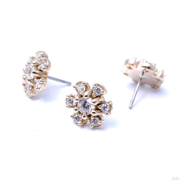 7 Stone Daisy Press-fit End in Gold from LeRoi in Clear CZ