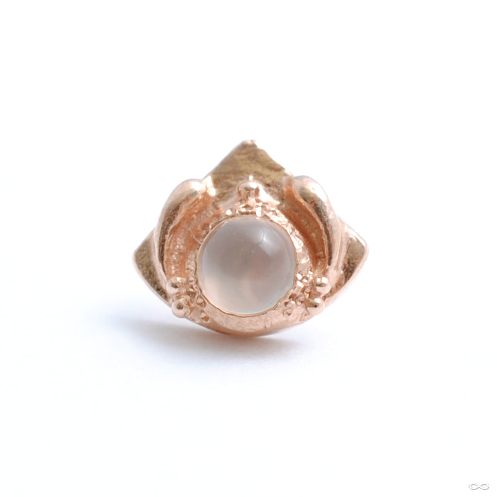 Queen Mother Press-fit End in Gold from Pupil Hall in rose gold with Moonstone