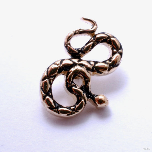 Coiled Snake Threaded End in Gold from BVLA in yellow gold