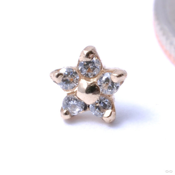 5 Stone Flower Press-fit End in Gold from LeRoi with Clear CZs