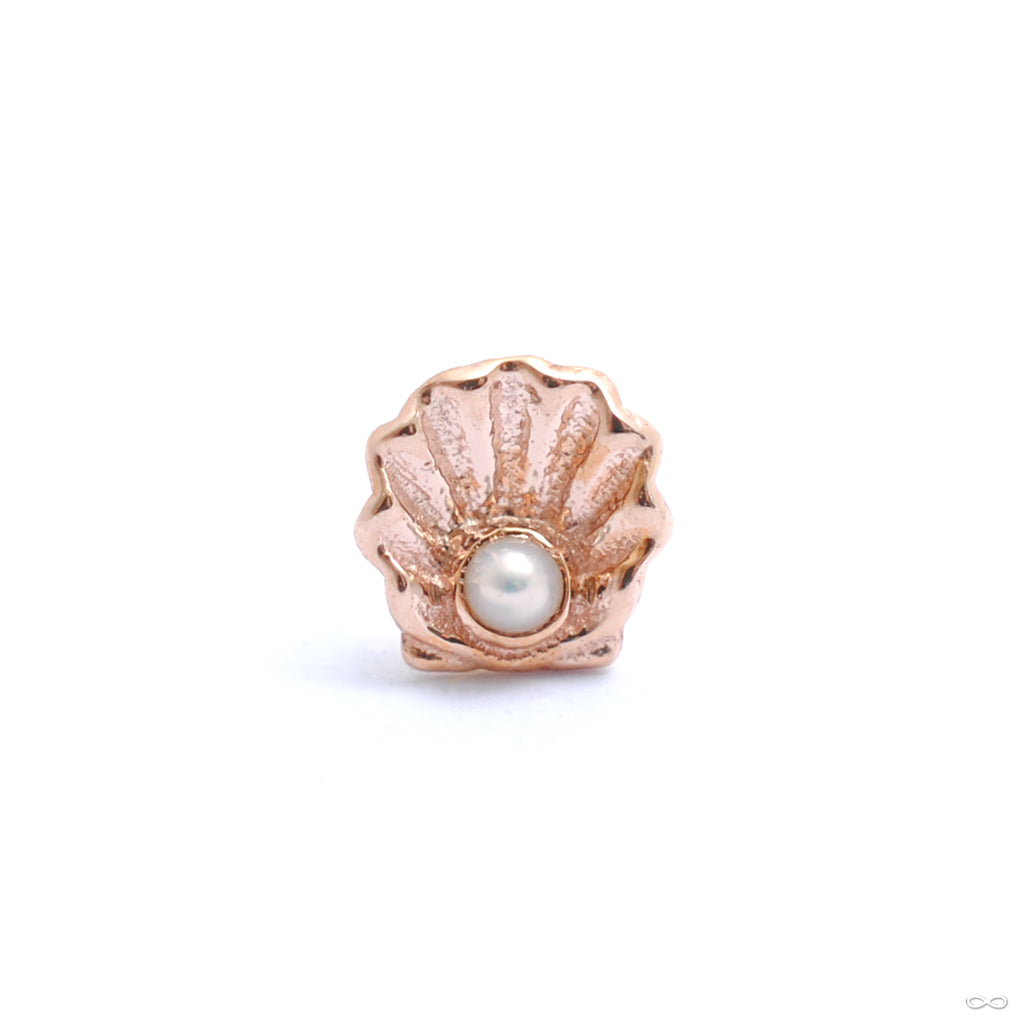 Scallop Press-fit End in Gold from BVLA with white pearl