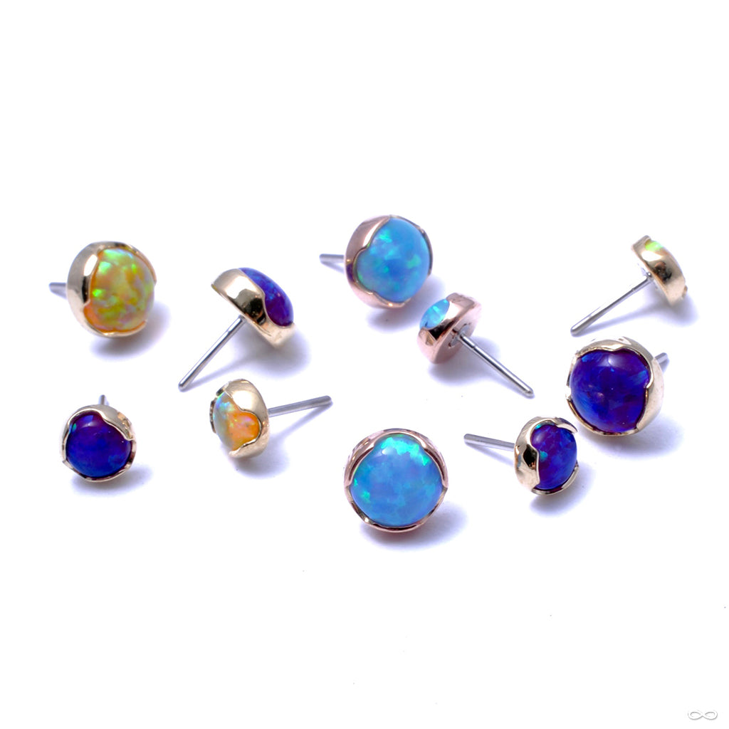Prong-set Cabochon Press-fit End in Gold from Anatometal with Light Blue Opal