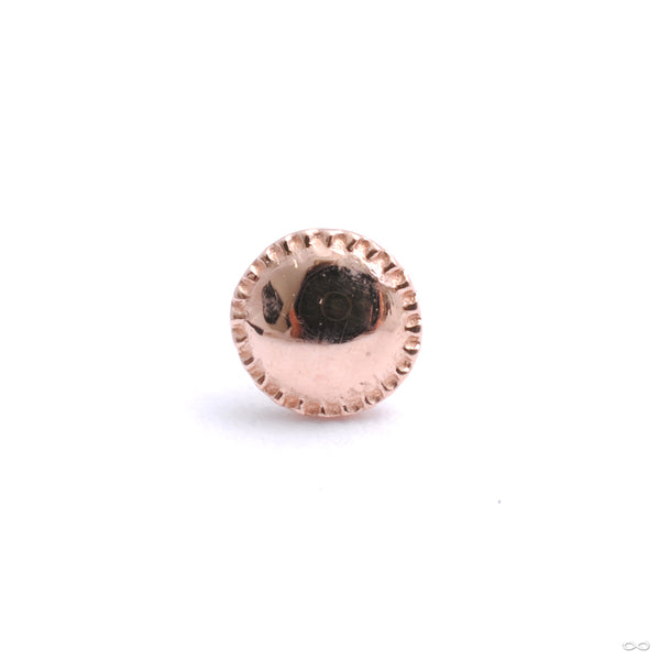 Alpha 01 Press-fit End in Gold from Tether Jewelry in rose gold