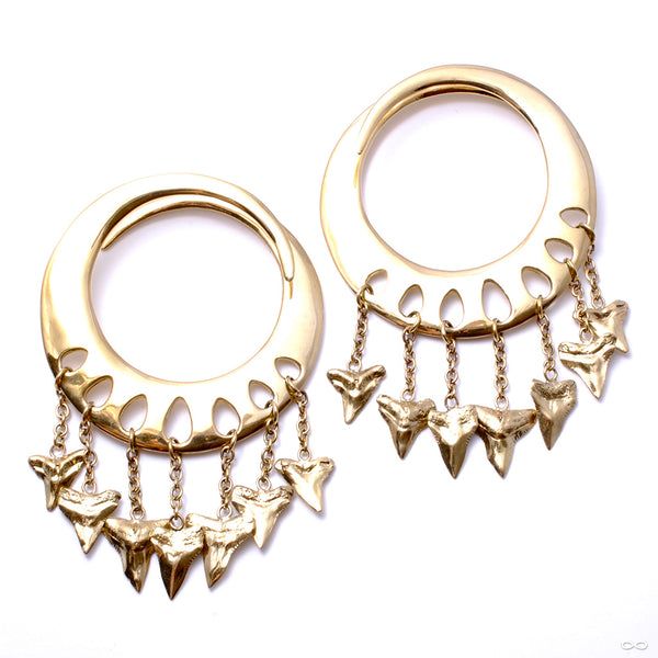 Lotus Shark Teeth Ear Weights from Diablo Organics in brass