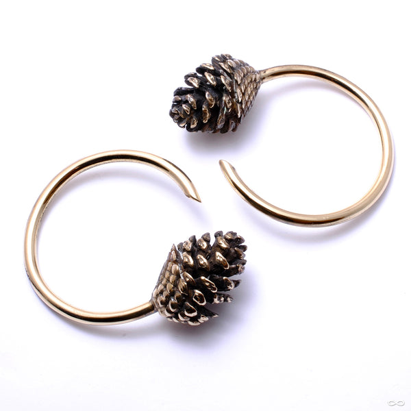 Pine Cone Weights from Eleven44 in brass