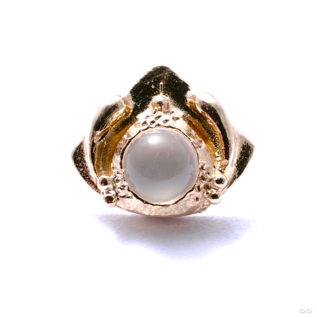 Queen Mother Press-fit End in Gold from Pupil Hall with moonstone
