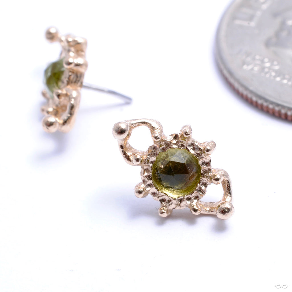 Quiet Crystal Press-fit End in Gold from Pupil Hall with peridot