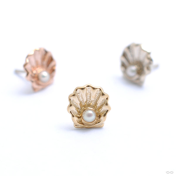 Scallop Press-fit End in Gold from BVLA in assorted materials