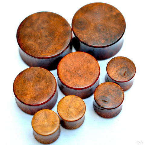 Amboyna Burl Plugs from Bishop Organics