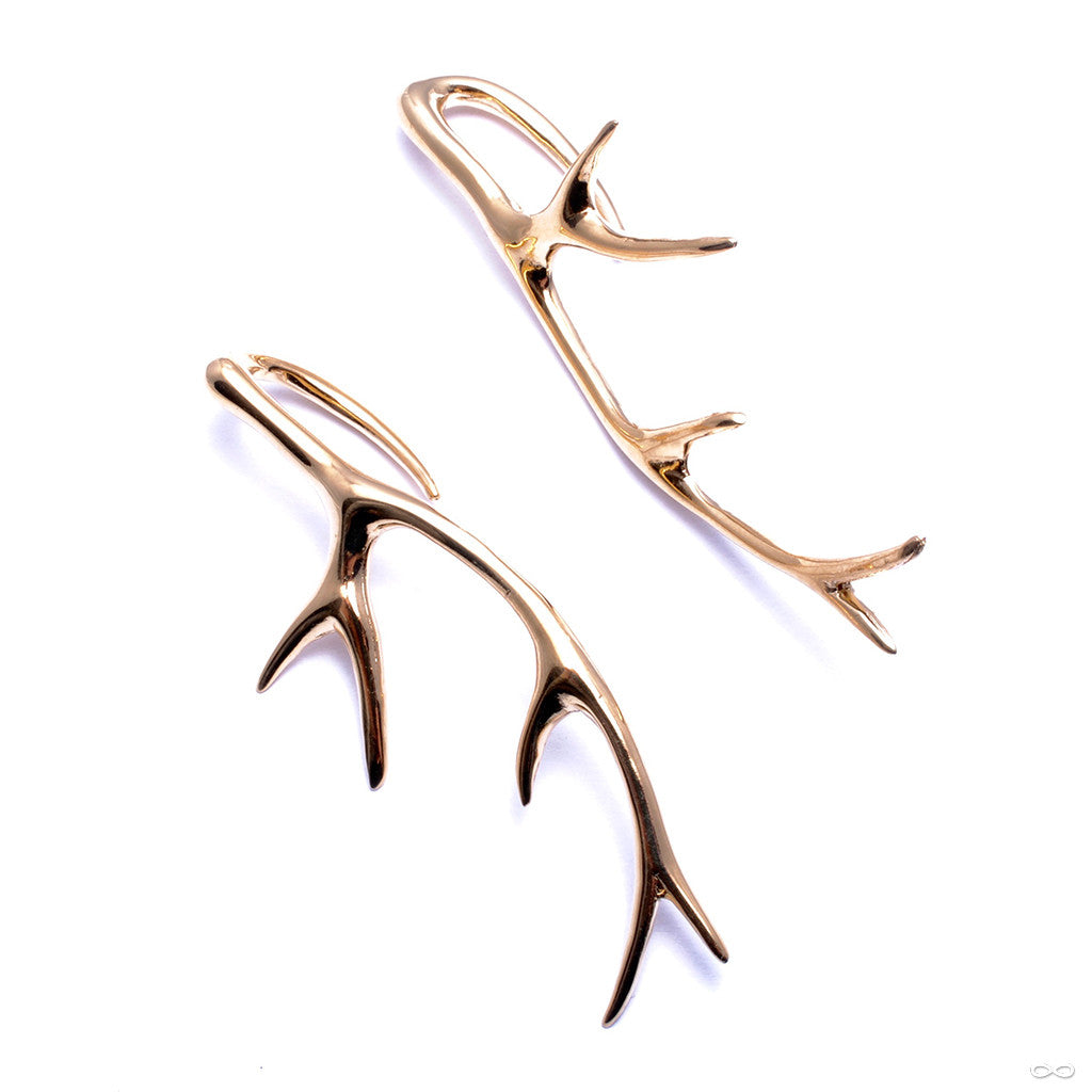 Antlers from Tawapa in Yellow-gold-plated Brass