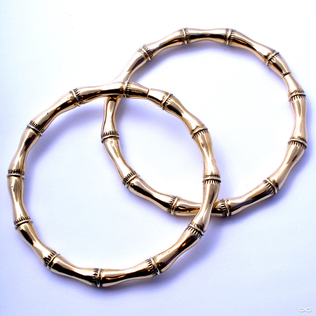 Bamboozled from Maya Jewelry in Brass