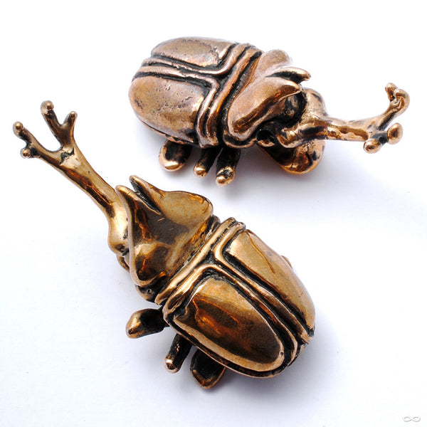 Beetle Ear Weights in Bronze from Blessings to You in High Polish Bronze