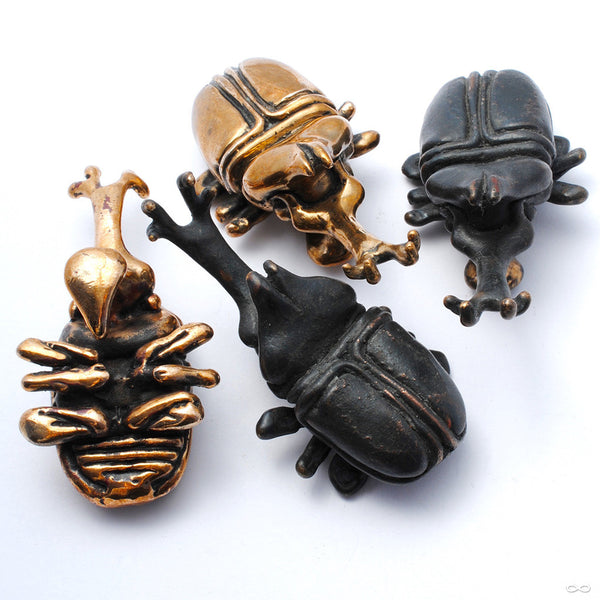 Beetle Ear Weights in Bronze from Blessings to You