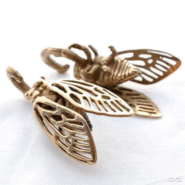 Cicada Ear Weights in Bronze from Blessings to You