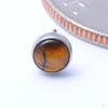 Bezel-set Cabochon Press-fit End in Titanium from NeoMetal with Tiger Eye