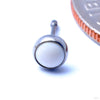 Bezel-set Cabochon Press-fit End in Titanium from NeoMetal with White Coral